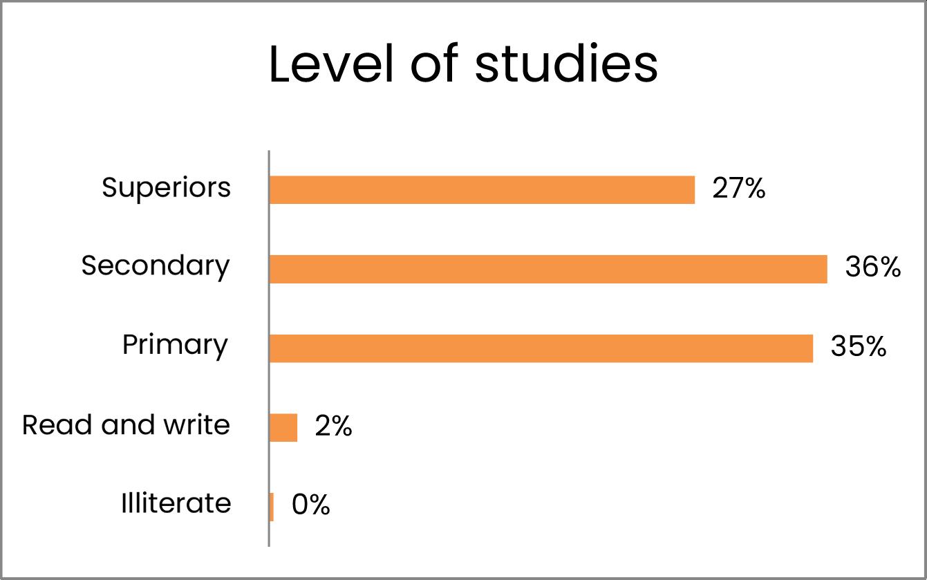 Nivell d'estudis